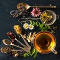 The Mall Luxury Outlets - Мимоза, травяной чай и весна в Италии